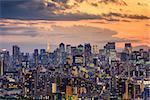 Tokyo, Japan city skyline at dusk.