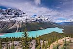 Beautiful Peyto Lake in the Canadian Rockies, Banff National Park, UNESCO World Heritage Site, Alberta, Canada, North America