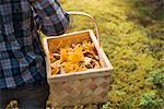 Child carrying basket full of mushrooms