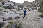 Hiker exploring Mojave Desert, Joshua Tree National Park, California