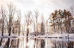 Snowy trees lining still lake