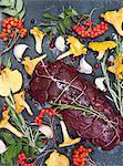 Raw venison with rowanberry and mushroom