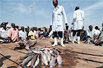 Gabba fisherfolk and customers buying freshly caught fish on the jetty, Uganda, Africa