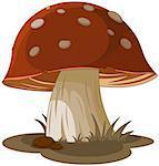 Illustration of magic mushroom