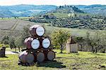Wine barrels in rural vineyard