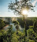 Distant view of Iguazu falls, Parana, Brazil
