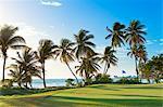 Trinidad and Tobago, Lowlands, Tobago Plantations Estate, View of golf course at seaside