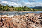 Forest at riverside, Carrao river, Canaima National Park, Venezuela