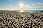 Sandy Beach with Sun