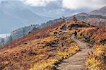 Scotland, Highland, Glenfinnan. Hiking near Glenfinnan in the autumn. MR