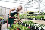 Female florist arranging flower pot in garden centre