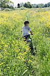 Rear view of boy cycling in field of buttercups