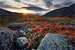Autumn coloured landscape at sunset near Chasnayok river, Khibiny mountains, Kola Peninsula, Russia