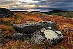 Autumn coloured landscape at Lake Imandra, Khibiny mountains, Kola Peninsula, Russia