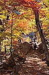 North Korea, Kumgang. Hikers enjoying the Kumgang Mountains in autumn.