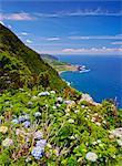 Portugal, Azores, Flores, View towards Faja Grande.