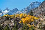 USA,California, Eastern Sierra, Bishop, Bishop creek in fall