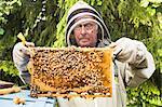 Beekeeper holding honeycomb
