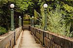 Moss-covered pedestrian bridge