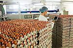 Female staff using digital tablet in egg factory