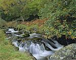 Barrow Beck and autumnal woodland near Ashness Bridge, Borrowdale, Lake District National Park, Cumbria, England, United Kingdom, Europe
