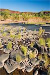 Victoria River, Northern Territory, Australia, Pacific