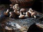 Fresh organic shitake mushrooms