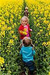 Children walking through oilseed rape field