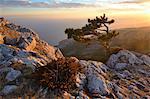View of mountain sunset from Ai-Petri Mountain, Crimea, Ukraine