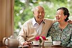 Happy senior couple inside their home.
