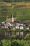 Germany, Rhineland-Palatinate, Moselle Valley, Zell-Merl