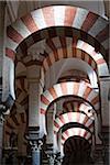 Interior of Mezquita-Catedral de Cordoba in Cordoba, iAndalucia, Spain