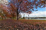 Portland Oregon city downtown waterfront park by Hawthorne Bridge in fall season