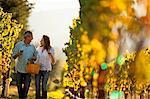 Mature couple enjoy romantic walk through vineyard while tasting wine.