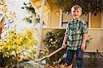 Portrait of boy gathering leaves in the backyard.