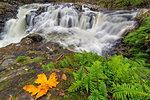 Yacolt Creek Falls at Moulton Falls Regional Park in Clark County Washington State in Autumn