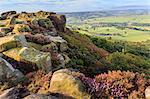 Baslow Edge, early autumn heather, view to Baslow village, Peak District National Park, Derbyshire, England, United Kingdom, Europe