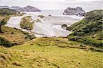View on Wharariki beach, South Island, New Zealand from grassy sanddune overlooking the beach