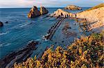Blossoming Arnia Beach (Spain) Atlantic Ocean evening coastline landscape. All peoples unrecognizable.
