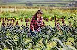 Woman in vegetable garden using digital tablet