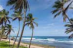 Beach, Bathsheba, St. Joseph, Barbados, West Indies, Caribbean, Central America