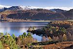 Woodland around Brandlehow, Derwent Water, Cumbria, England, United Kingdom, Europe