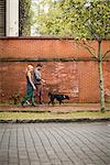 Couple walking dog on pavement, Savannah, Georgia, USA