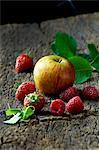 Raspberries, strawberries and apple on tree bark