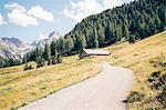 Curving road and cabin on hillside, Buerserberg, Vorarlberg, Austria