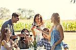 Friends enjoying glass of wine at vineyard
