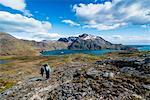 Tourists hiking in Godthul, South Georgia, Antarctica, Polar Regions