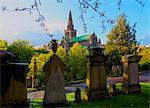 The Necropolis, view towards The Cathedral of St. Mungo, Glasgow, Scotland, United Kingdom, Europe