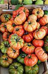 Costoluto beefsteak tomatoes in a wooden crate
