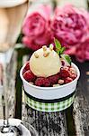 Caramel and vanilla ice cream with fresh raspberries on a garden table